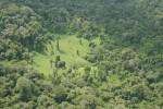 Vue aérienne cambrouze, Nouragues