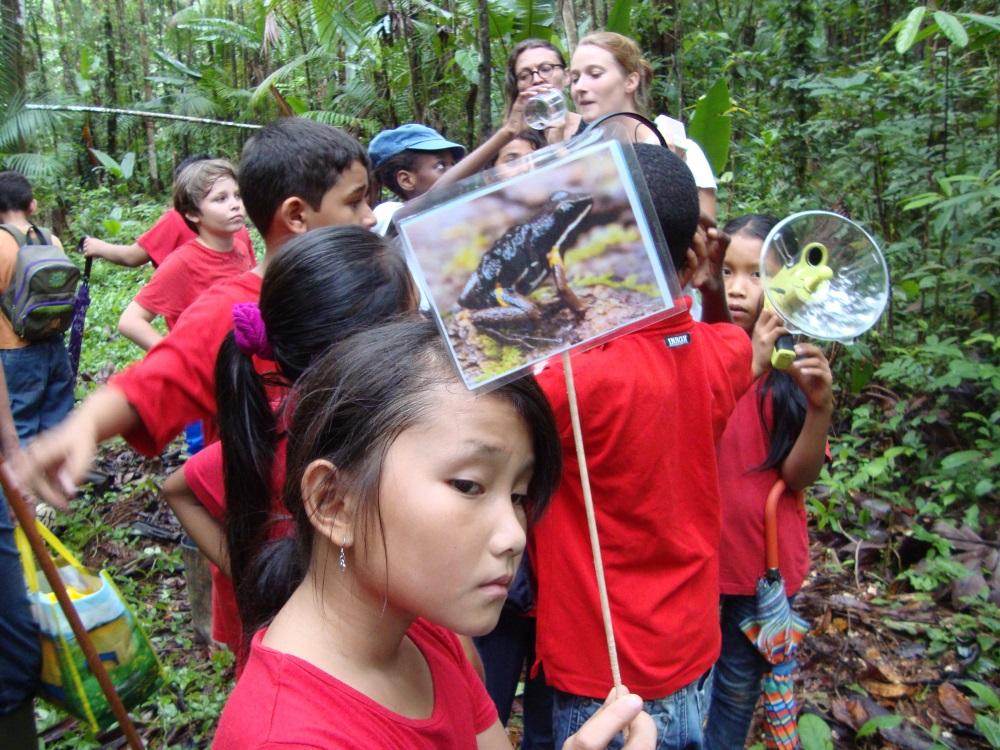 Ecoute de chants amphibiens et identification de l'espèce © Ecole Maurice Leanville