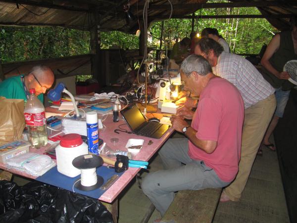 Mycologues au laboratoire sur le camp Inselberg © J. Devillechabrolle