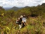 Observation de la savane roche avec Guillaume Léotard, expert botaniste