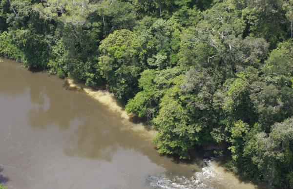 Pollution fluviale par orpaillage