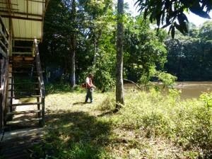 Débroussaillage du camp Arataï
