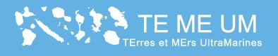 logo TEMEUM