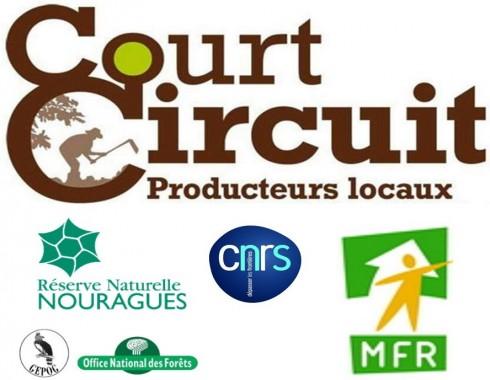 logo_court-circuit