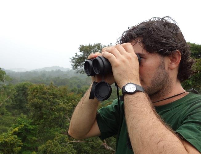 Observation des oiseaux aux jumelles